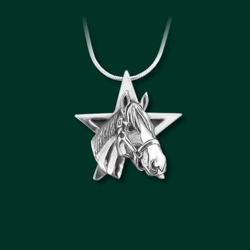 Jane Heart Jewelry have the best gifts for the horse lover in your life. Check out this Justify the horse small star pendant!